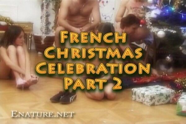 French christmas celebration 2