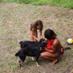 Nudists Brazilia  - Lush green travels 1